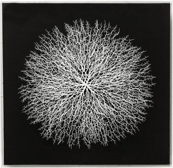 Kare Design - Dekorahmen - Vascular schwarz - 90 x 90 cm